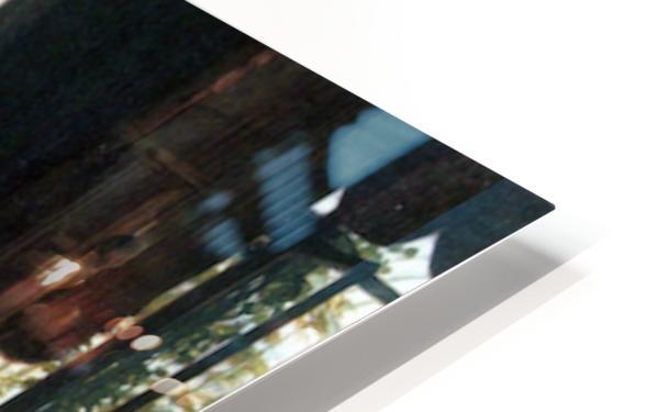 Hide-and-seek by Tissot HD Sublimation Metal print