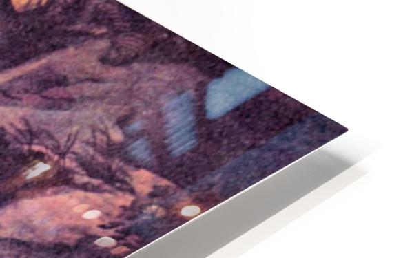 Hieronymus by Rubens HD Sublimation Metal print