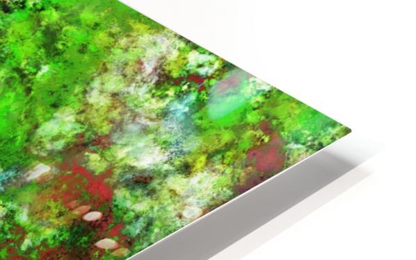 Slippery green rocks HD Sublimation Metal print