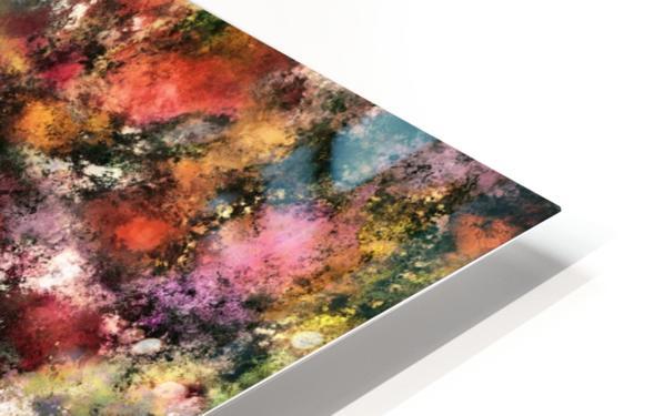 A single source HD Sublimation Metal print