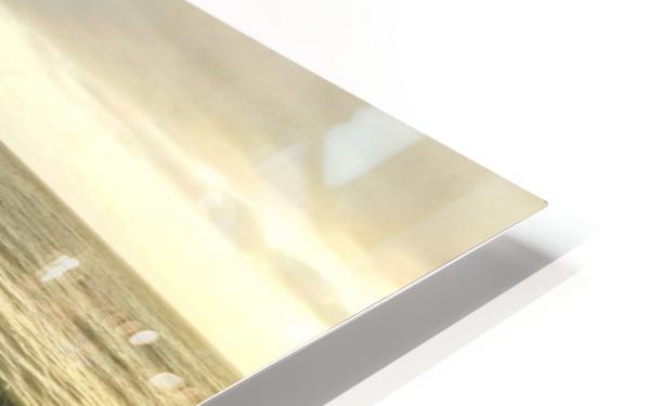Jaco Beach HD Sublimation Metal print