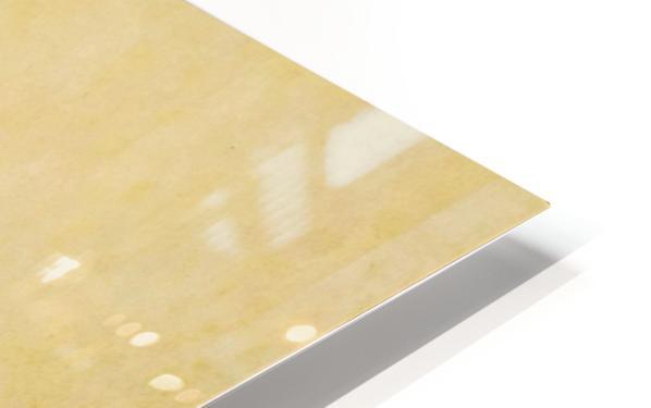 img 20200606 164158 1_QGF7qH1i (1) HD Sublimation Metal print