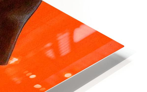 Awaken HD Sublimation Metal print