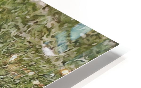 Buff Orpington Duck HD Sublimation Metal print