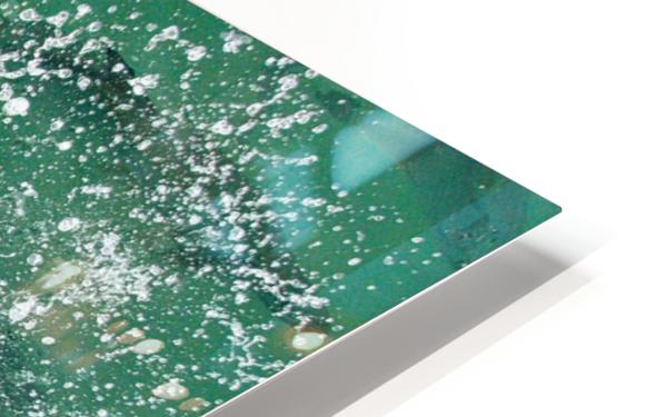 Tarpon Feeding HD Sublimation Metal print