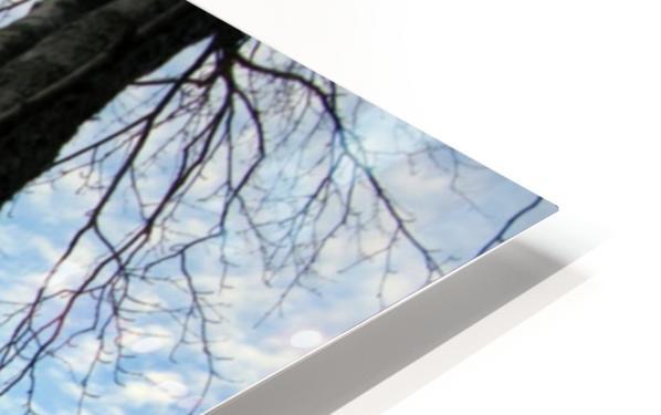 Love at the Lake HD Sublimation Metal print