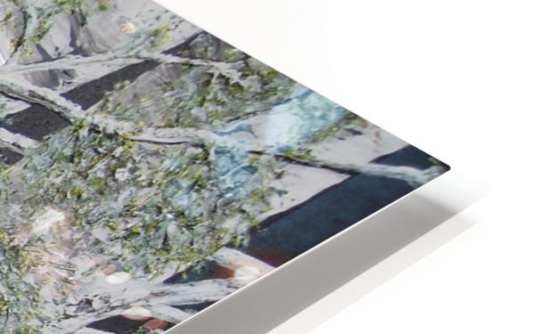 Snowdust in Spring HD Sublimation Metal print