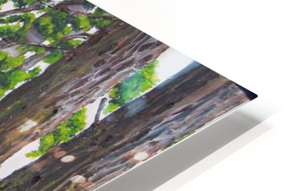 Fairies Forest HD Sublimation Metal print