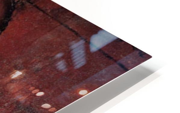 Modigliani - Girl with plaits HD Sublimation Metal print
