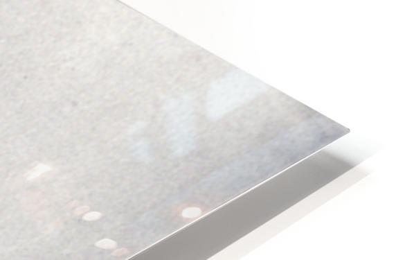 Modigliani - Sitting man HD Sublimation Metal print