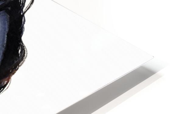 Grey Horse HD Sublimation Metal print