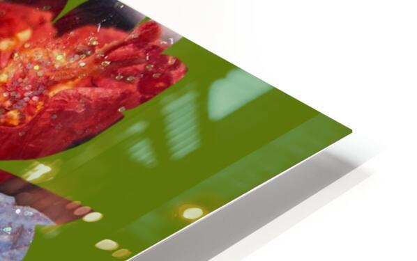 flowersandflex HD Sublimation Metal print