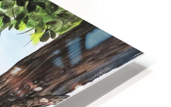 Collection COSTA RICA-Matapalo Impression de sublimation métal HD