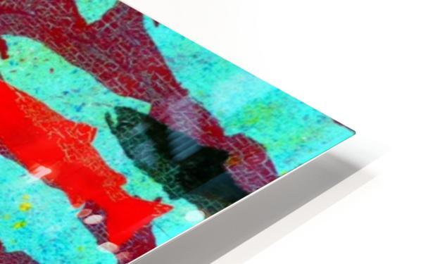 Critical Mass HD Sublimation Metal print