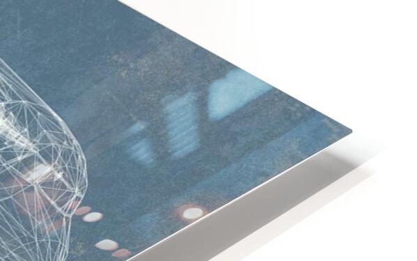 fokker HD Sublimation Metal print