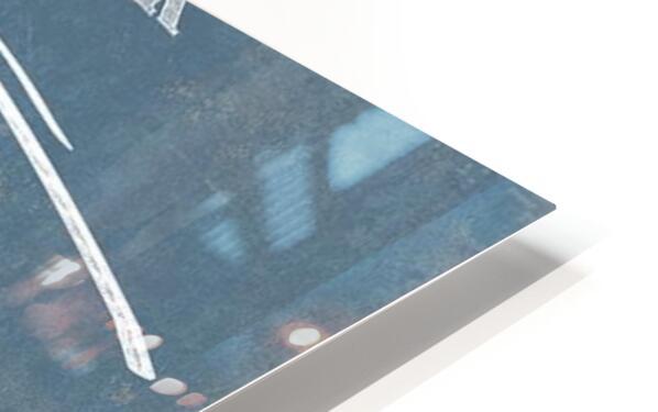 seahawk HD Sublimation Metal print