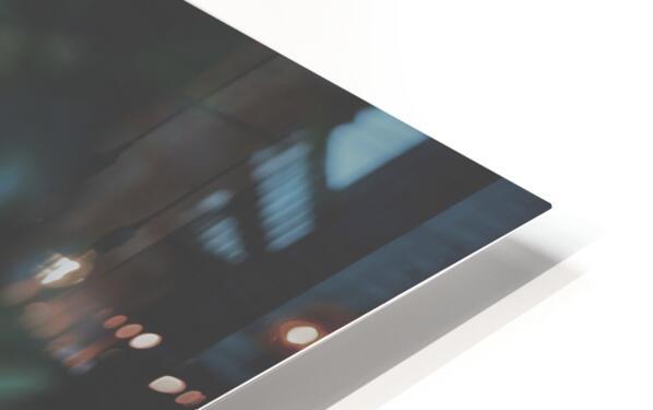 Bamboo shoots HD Sublimation Metal print