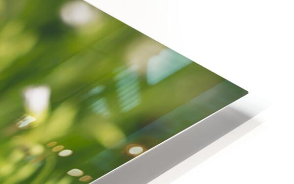 White on green HD Sublimation Metal print