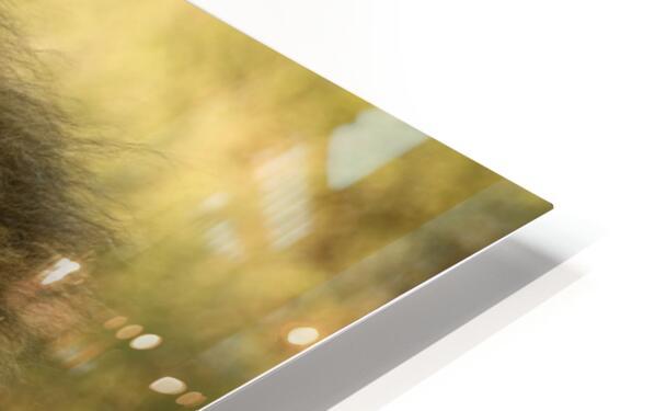 AdriaanPrinsloo 6942 HD Sublimation Metal print