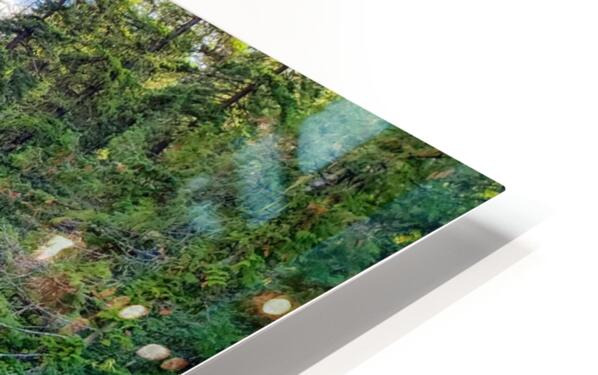 Icicle Gorge Trail HD Sublimation Metal print
