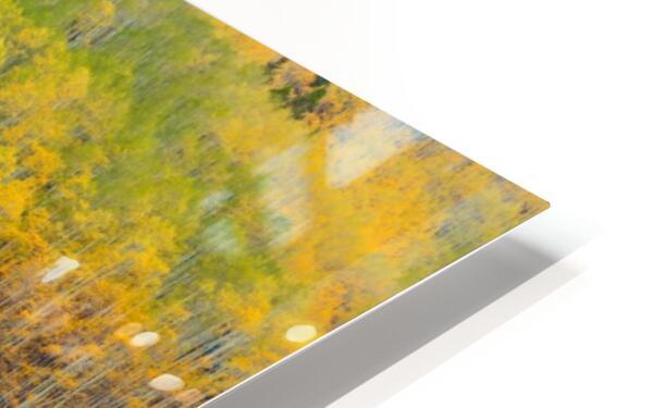 TRANSITION  HD Sublimation Metal print