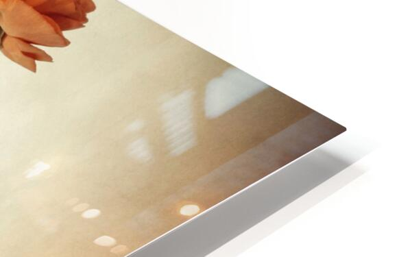 Vanishing HD Sublimation Metal print