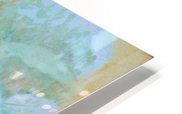 DSC_1046 HD Sublimation Metal print