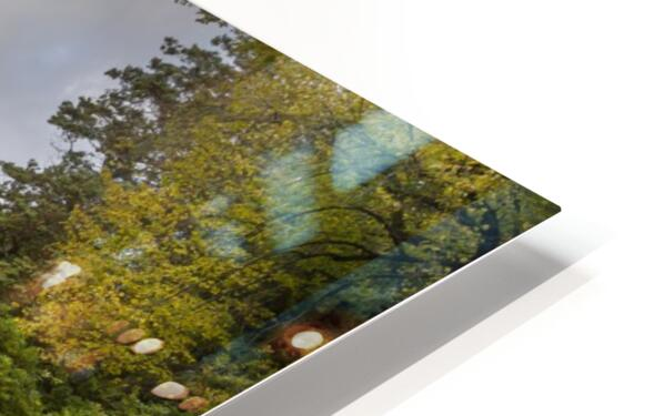Autumn at Craig-y-Nos Country park  HD Sublimation Metal print