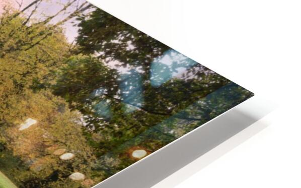 Autumn reflections in a field HD Sublimation Metal print