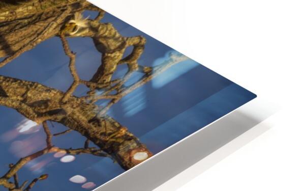 Renewal HD Sublimation Metal print