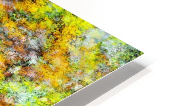 Scrambled eggs HD Sublimation Metal print