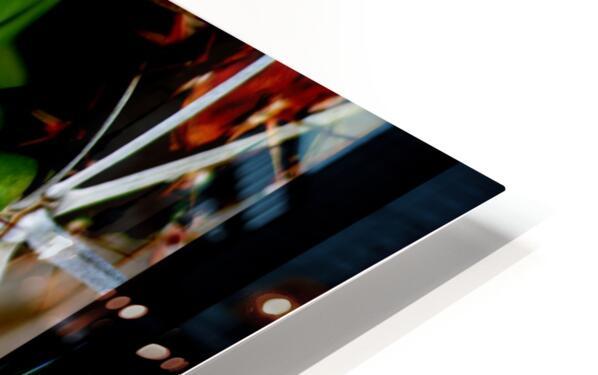 Neon Black Velvet Cactus 1 HD Sublimation Metal print