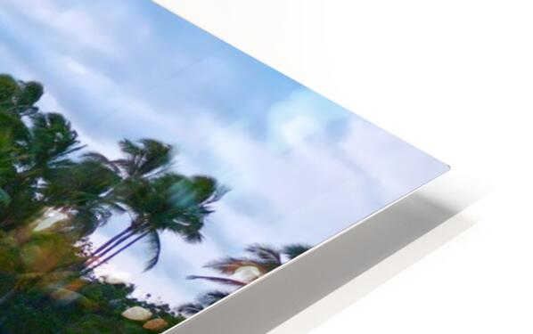 Untamed Hawaii HD Sublimation Metal print