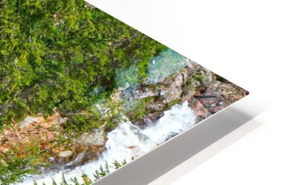 Spring Runoff Chipmunk HD Sublimation Metal print