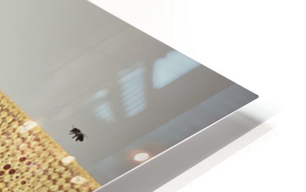 Beekeeping 2073 HD Sublimation Metal print