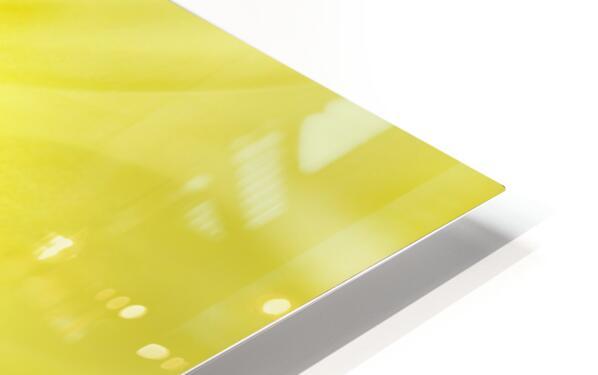 Yellow Daisy HD Sublimation Metal print