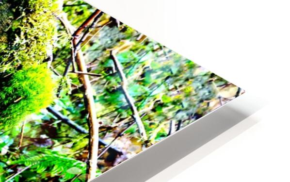 Tiny World 7 of 8 HD Sublimation Metal print