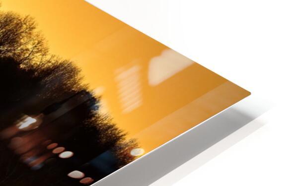 Sunrise at Langley Pond Park   Aiken SC 7R301610 12 19 20 HD Sublimation Metal print