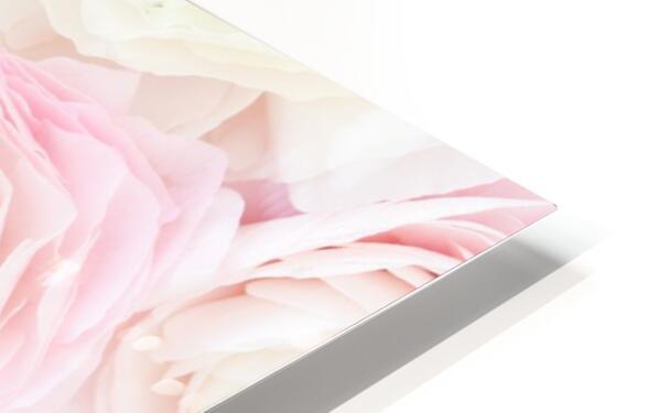 Daltana Spring Erill HD Sublimation Metal print