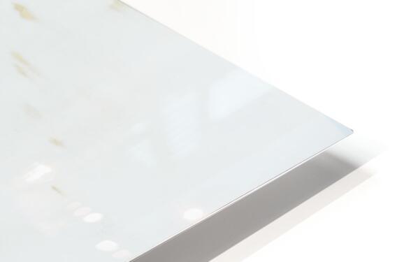 Daltana Spring Frill HD Sublimation Metal print