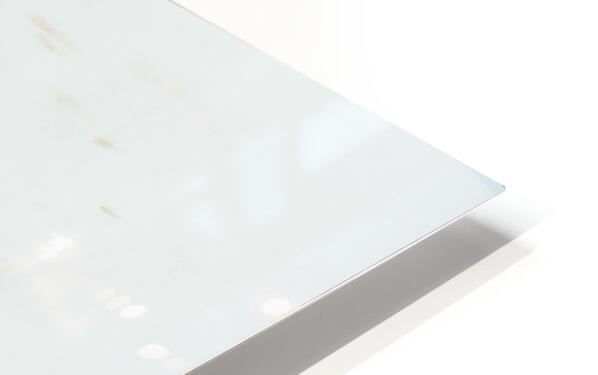 Daltana Spring Crill HD Sublimation Metal print