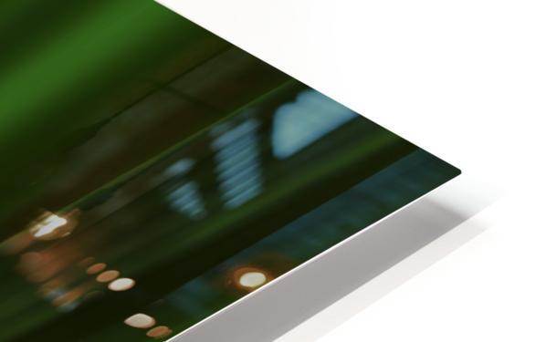 Green Frog HD Sublimation Metal print