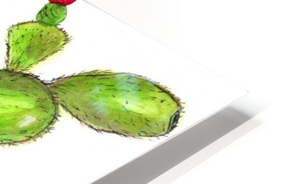 Flowering Cactus  HD Sublimation Metal print