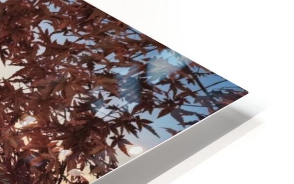 Mount Fuji HD Sublimation Metal print