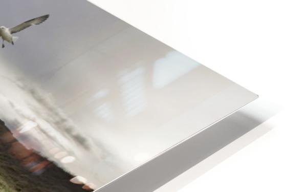 Stillness by Bragi Ingibergsson - HD Sublimation Metal print
