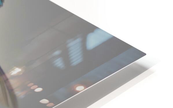 Colibris HD Sublimation Metal print