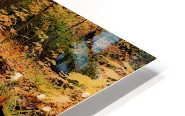 Passage oblige   HD Sublimation Metal print
