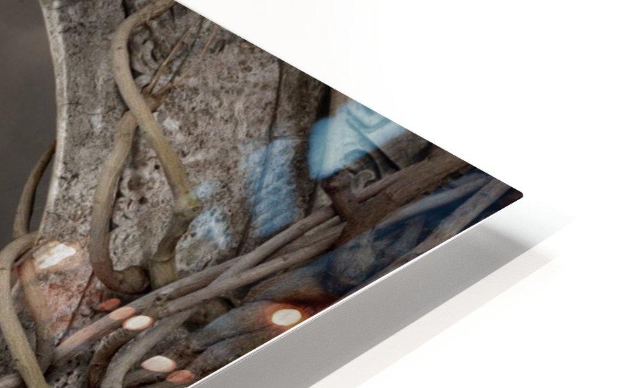 Mendacium HD Sublimation Metal print