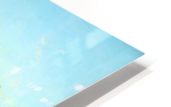 Aan de Lek bij Elshout HD Sublimation Metal print