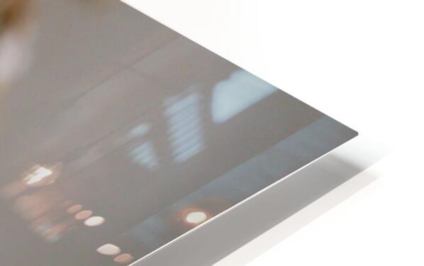 Goldfinch ap 1814 HD Sublimation Metal print